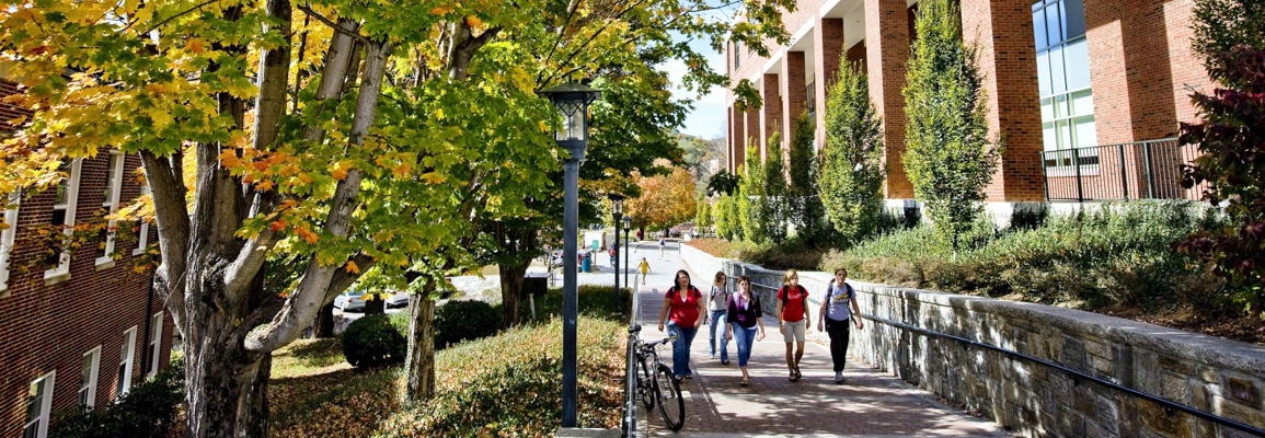 students walking by the library in fall