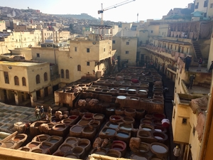 tanneries in Fes